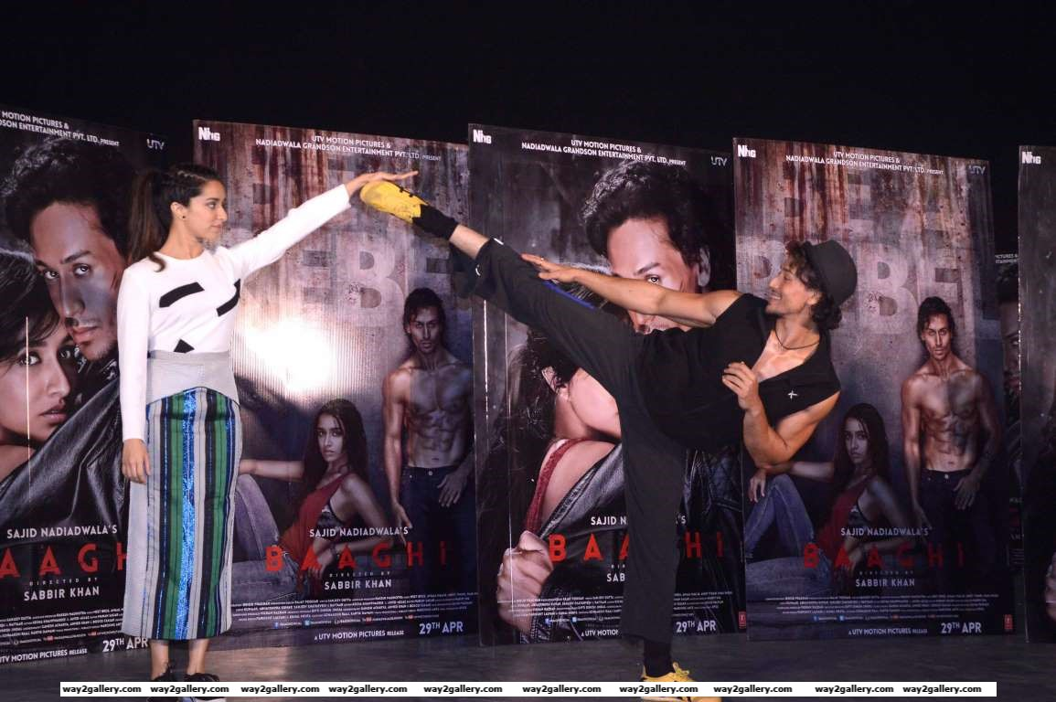 Shraddha Kapoor and Tiger Shroff showcased some martial art moves at the promotion event of their upcoming film Baaghi