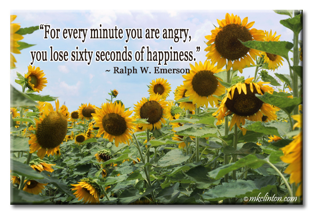 """For every minute you are angry, you lose 60 seconds of happiness."" meme"