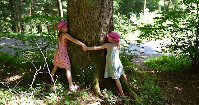 Image: Children Hugging a Tree, by Petra/Pezibear on Pixabay