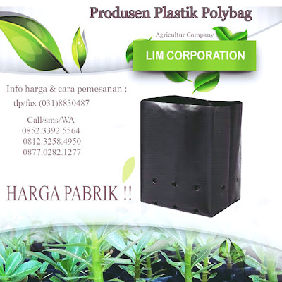 www.polybag99.com