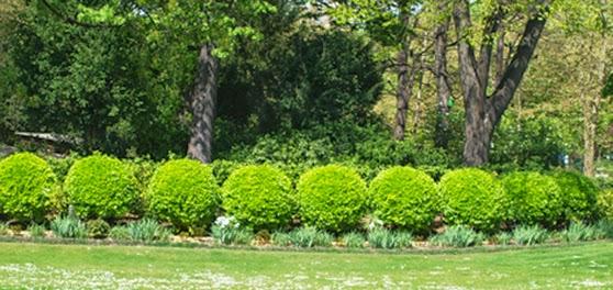Park i Paris, Jardin du Luxembourg