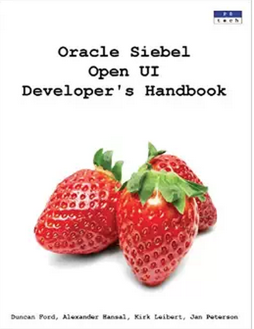 impossible siebel obiee developer resume