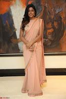Eesha Rebba in beautiful peach saree at Darshakudu pre release ~  Exclusive Celebrities Galleries 067.JPG