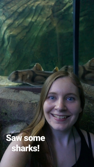 Sydney Aquarium shark tank selfie | away from the blue blog