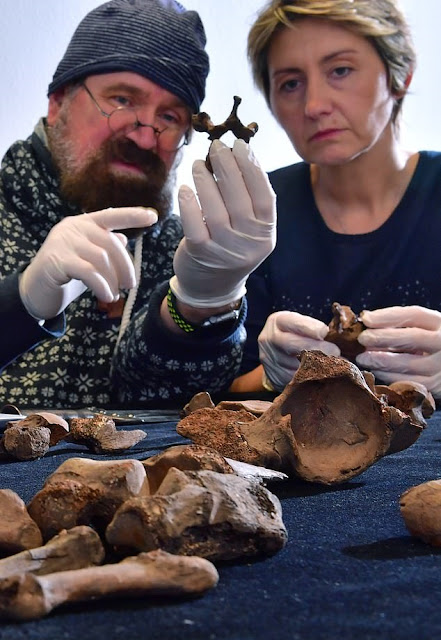 German forensics team say Bronze Age 'prince' was murdered