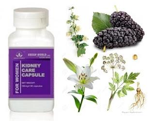 Obat Herbal Kidney Care Capsule (for Women)