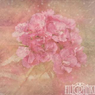 http://www.filigranki.pl/papiery/1810-nostalgia-01.html