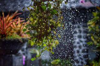 3 Rahasia Tersimpan Dibalik Turunnya Hujan