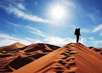 """""""Consejos para sobrevivir en el desierto2"""""""