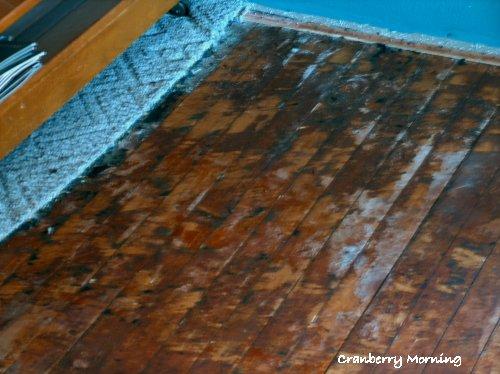 Cranberry Morning: Refinishing Hardwood Floors