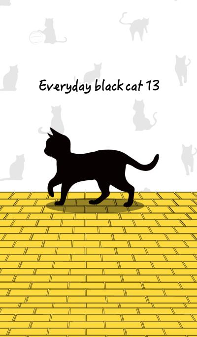 Everyday black cat13