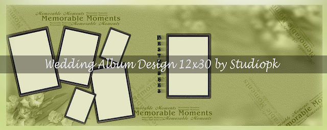 Wedding Album Design 12x30 Psd Files Download