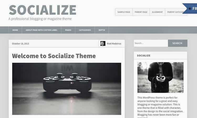 Socialize Lite - Blogging theme