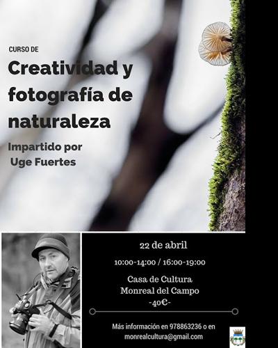 Creatividad y fotografía de naturaleza