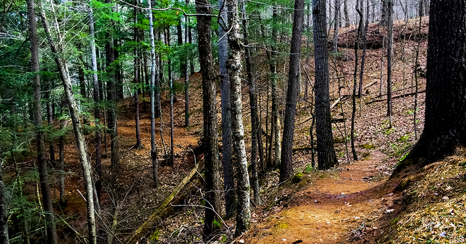 Along the trails, a brook tumbles down the ridge, giving the impression of places farther north. Wisconsin Explorer Hiking The Hemlock Trail At Mt Pisgah Hemlock Hardwoods Sna