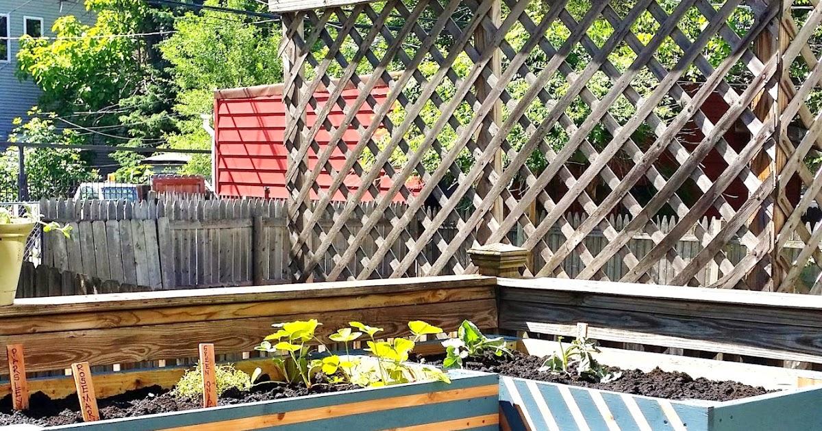 Raised Garden Box Wood