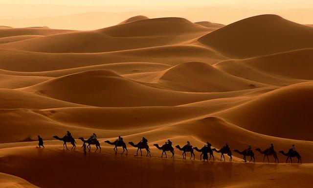 Foto de Sahara Ralph A. Ledergerber