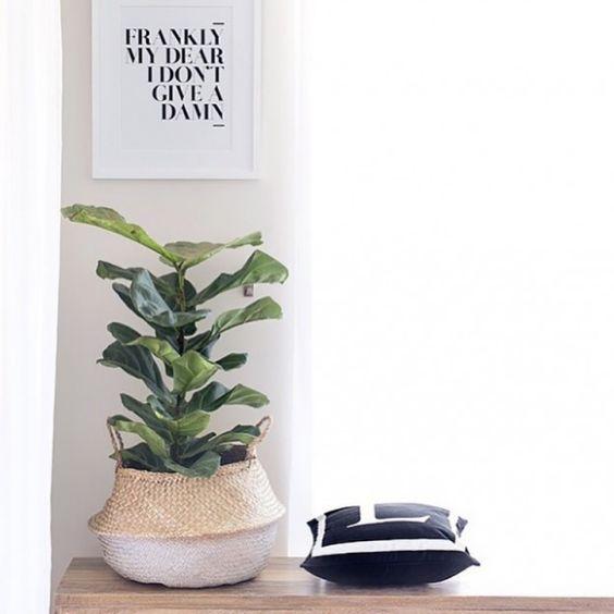 Decorar con cestas naturales y plantas-4