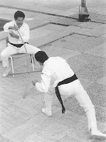 Jogo do Pau - seated parries