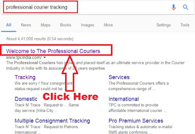 how to track my professional courier online