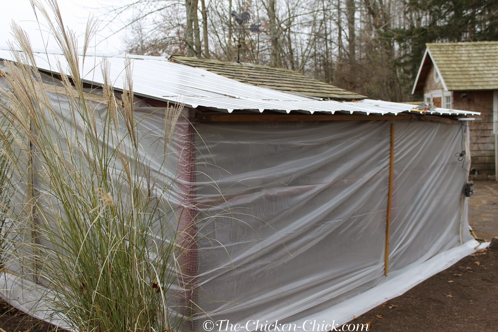 insulation for chicken coop uk   download chicken coop plans poultry house foam insulation Broiler House Insulation