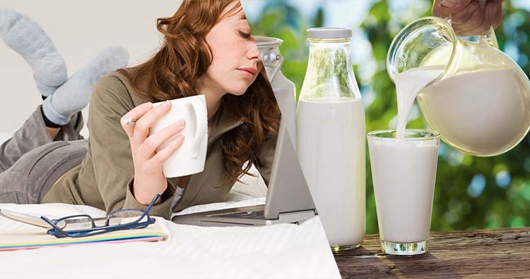Minuman Susu Sapi Nikmat Untuk Meningkatkan Kinerja Otak