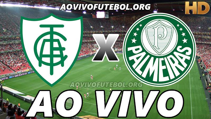 América Mineiro x Palmeiras Ao Vivo na TV HD