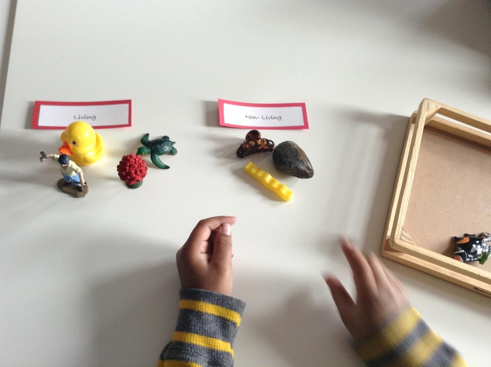 Teachermomplus3 Montessori Zoology Living And Non Living