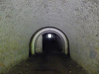 Тараканівський (Дубенський) форт. Галерея форту