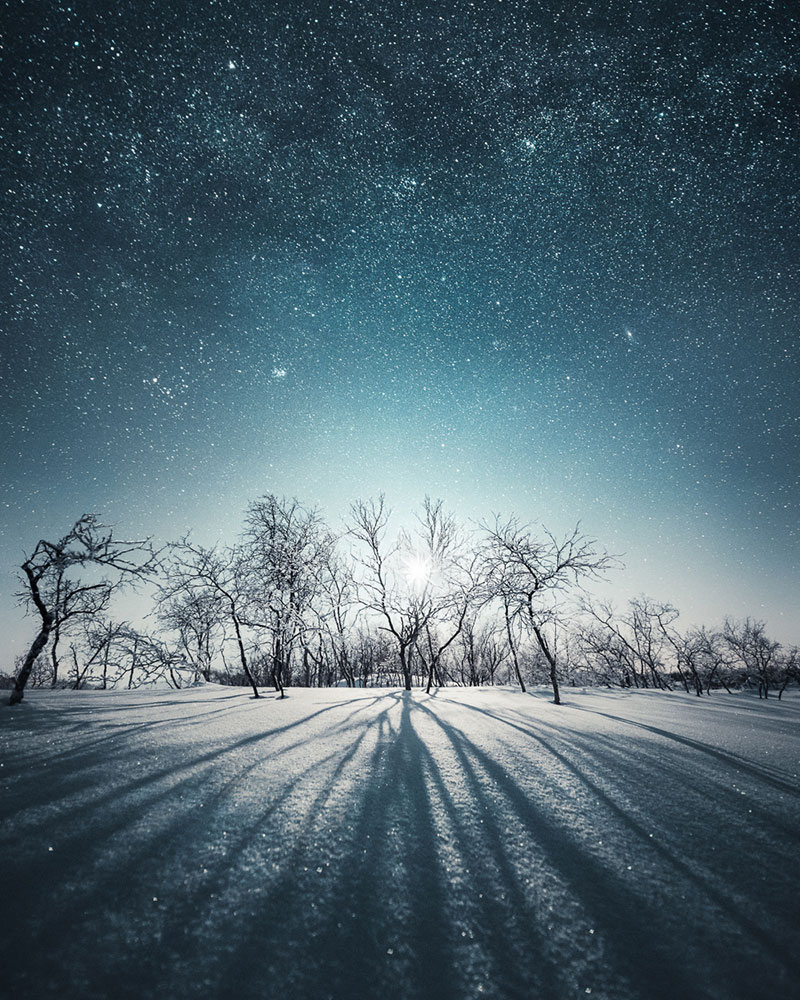 The Shapes of Nature: Photos by Mikko Lagerstedt