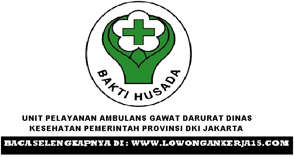 Lowongan kerja Dinkes Provinsi DKI Jakarta