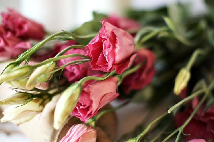 Schnittblumen Im Mai schnittblumen str u e und gestecke