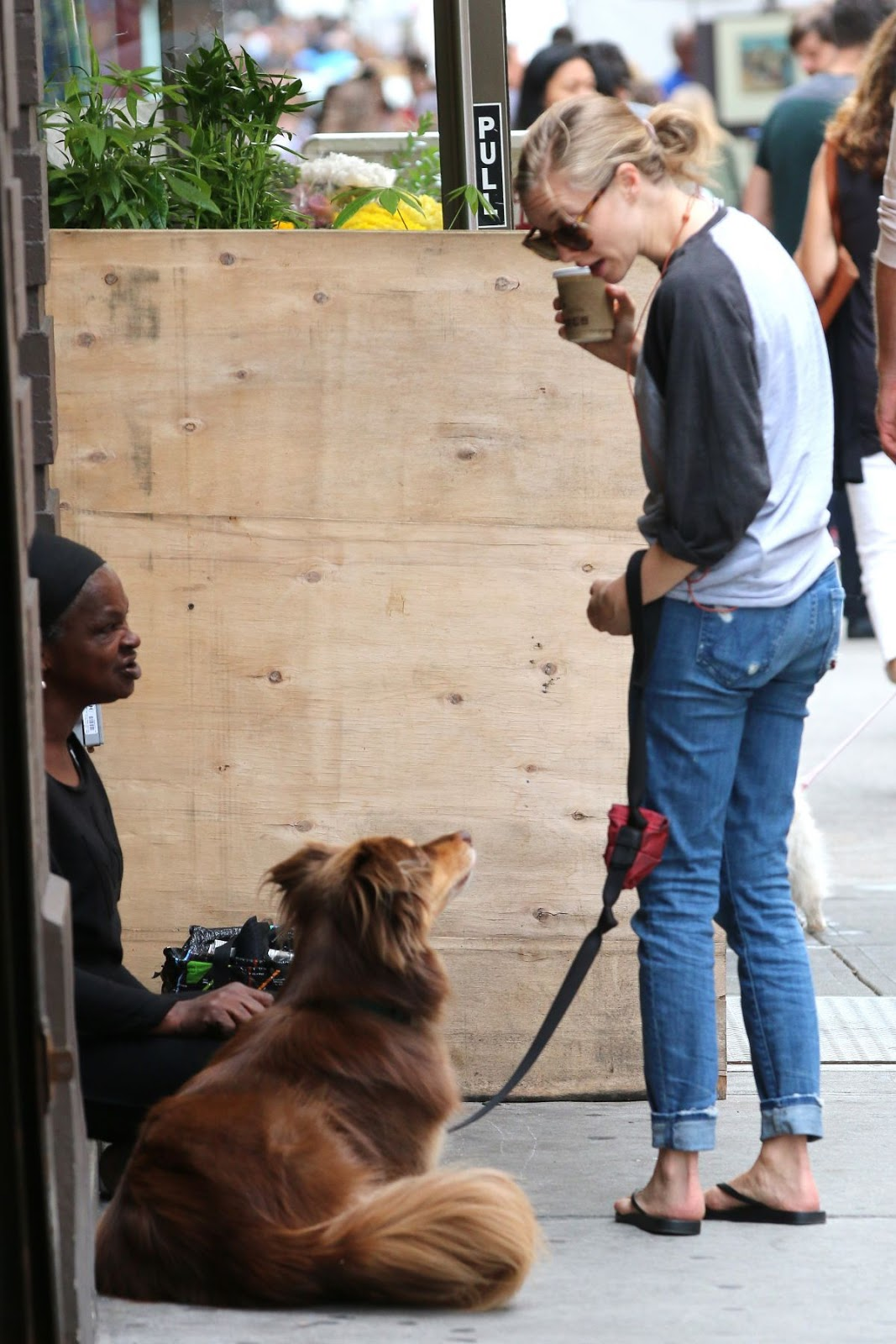 Amanda Seyfried Walks with Her Dog Out In New York