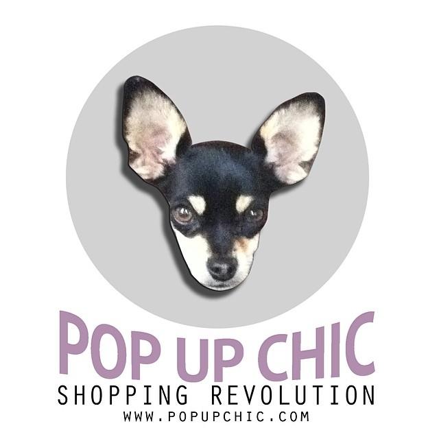Logo de la tienda Pop Up Chic con la cara de un chihuahua