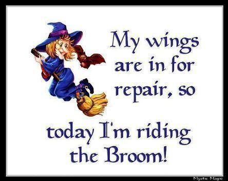 Famous funny halloween witch broom quotes and sayings images  Funny Hallowee...