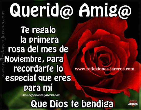 Querid@ amig@ Te regalo la primera rosa del mes de noviembre, para recordarte lo especial que eres para mí Que Dios te bendiga.