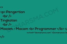 Pengertian Tingkatan dan Macam-Macam Programmer
