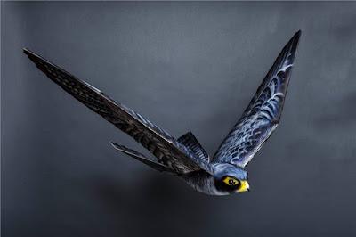 robird-drone