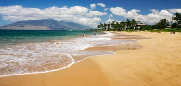 كيف  نحافظ على الشواطئ