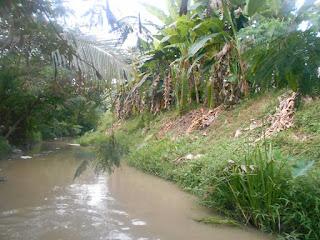 Kali Dusun Sekarmayang