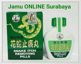 https://jamuonlinesurabaya.blogspot.com/2018/05/jual-snake-itch-removing-pills-ramuan.html