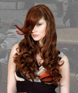 Hairstyles For Long Curly Hair Hairstyle Ideas