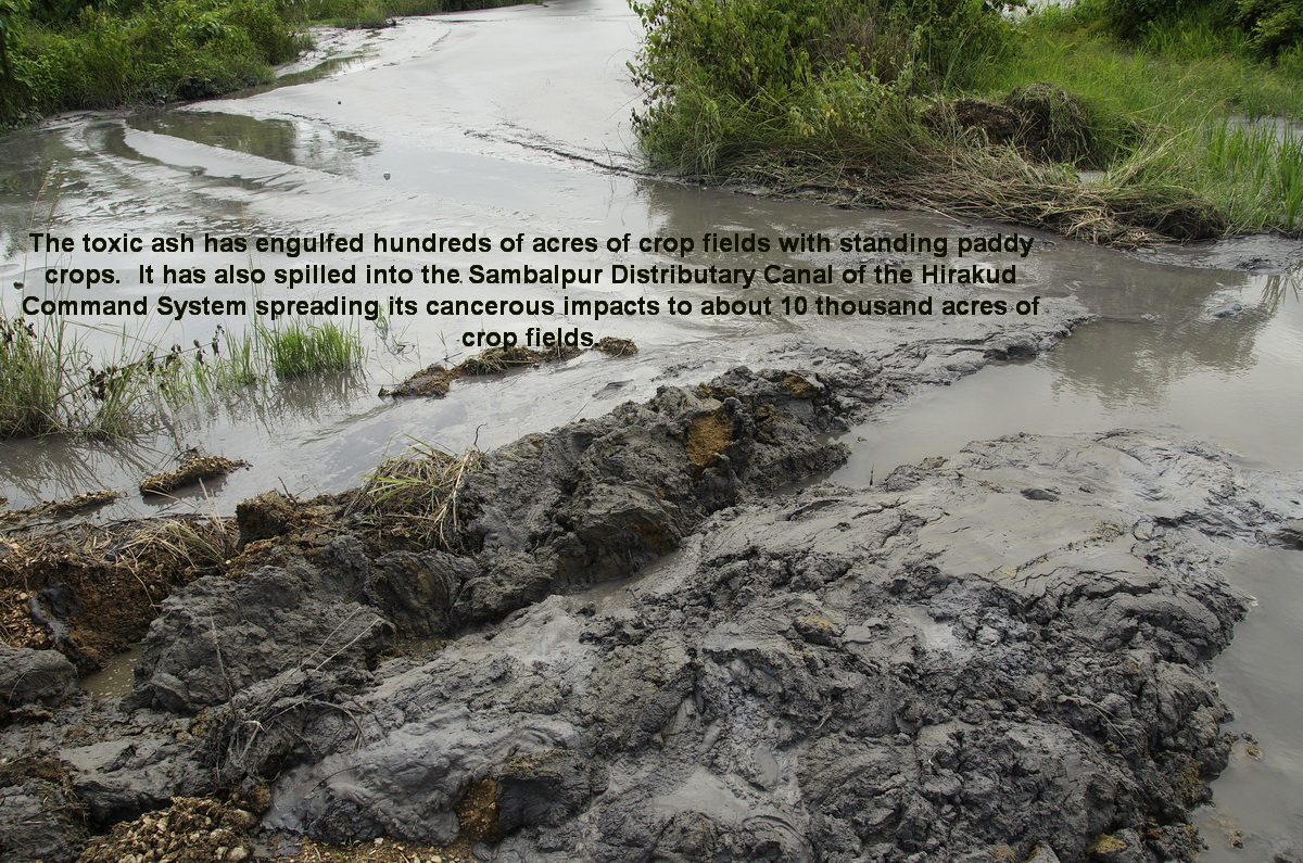 climatecrusaders: WIO Update I on Hindalco's Ash Pond Breach: 20th