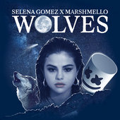 Selena Gomez with Marshmello Wolves Lyrics