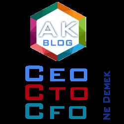 CEO, CTO , CFO ne demek?