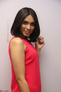 Spatika Surapaneni in Red Tight Dress at FBB Miss India 2017 finalists at Telangana auditions Feb 2017 (37).JPG