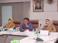 Gubernur Sumsel: UMKM Masih Sulit Mendapatkan Suntikan Modal