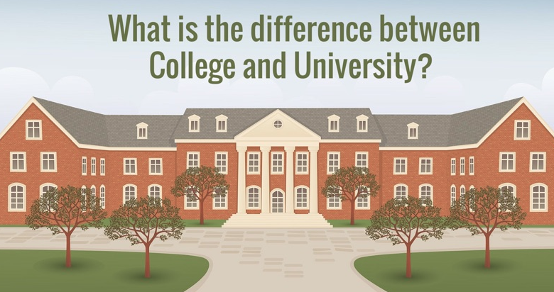 What is the Differences Between College and University