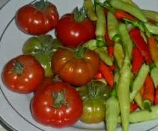 tomat bergelombang atau ranti buat nasi tempong