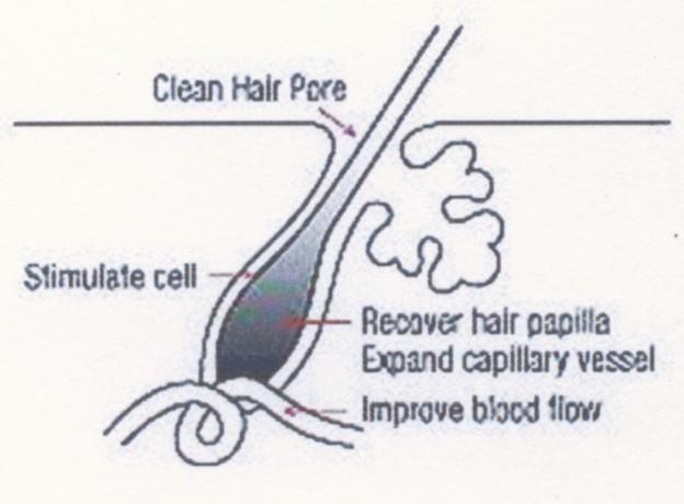 Bagaimana Cara Merawat Rambut Secara Alami Agar Cepat ...